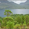 Loch Maree - Beinn Eighe National Nature Reserve - Woodland Trail