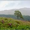 Loch Beinn a' Mheadhoin. Beauly