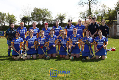 Wicklow v Kildare 2012