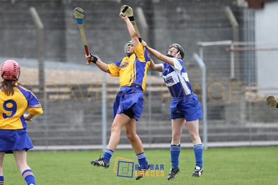 Wicklow v Laois 2010