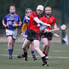 Wicklow v Down : Bord na Mona Kehoe Cup Hurling WICKLOW 1-15 DOWN 0-15 Bray 20.01.13
