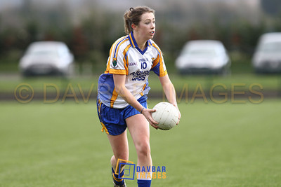 Wicklow v Down 2012