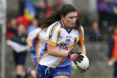 Wicklow v Longford 2012