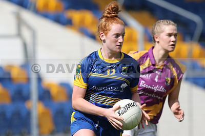 Wicklow v Wexford 2016