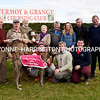 20/10/2016<br /> <br /> The McCarthy Insurances Inter Club Stake run at Fermoy Coursing Club was won by Marco Polo , running for Mitchelstown. Owned by the Picnic Basket Syndicate, Michael Hogan takes the Shanahan Memorial from Eily Shanahan, Derry Dineen takes the replica from John Kenny, sponsor Martin Shanahan, Emma Creed, Ned Creed Pat O`Neill,<br /> handler Dave Norris, trainer Pat Norris and Jack Norris,