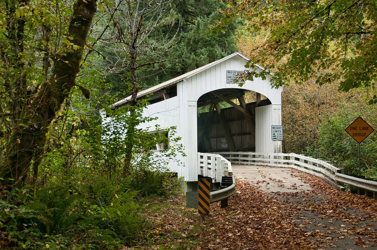Wildcat Creek Covered Bridge 1 - This can be found near milepost 26 on Highway 126 east of Mapleton, OR