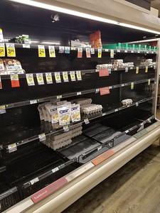 pandemic shopping Delaware (8)