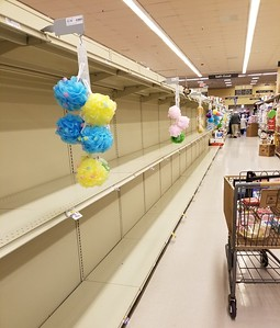 pandemic shopping Delaware (35)