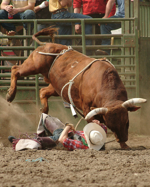 sedro rodeo092