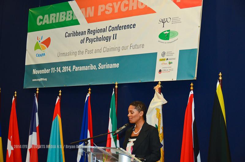 12-11-2014 Opening Conferentie Psychologie (30)