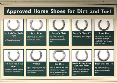 Horse Shoes Chart
