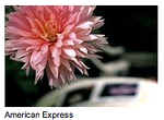 http://www.judyrhee.com/commercials/item/46-american-express EXPRESS LINK: http://www.judyrhee.com