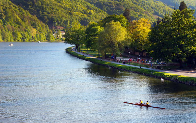 Bernkastel Germany, Rowers on the Mosel