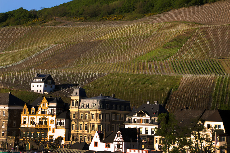 Viking River Cruise, Cochem Germany, Town & Vineyards