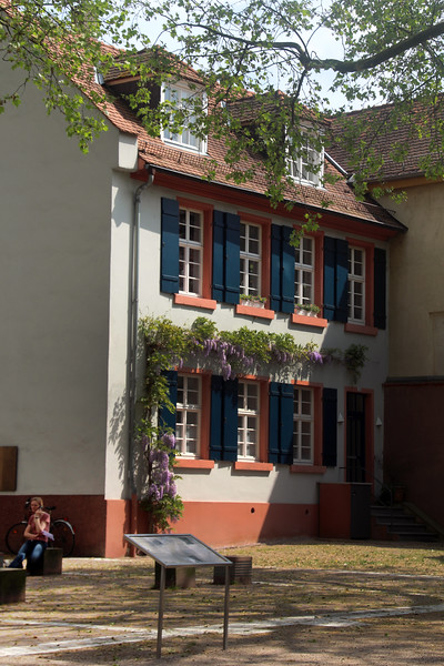 Heidelberg Germany, Old Building with Wisteria