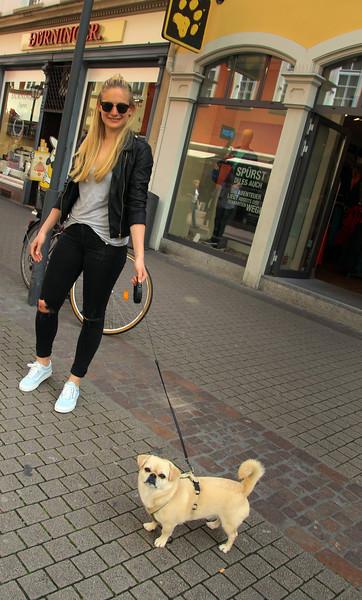Heidelberg Germany,  Street Scene