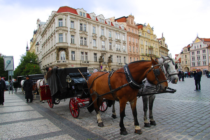 Prague, Czech Republic, Horse Carriages, Old Town Square