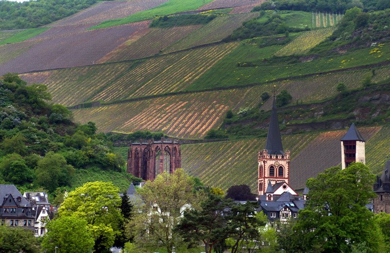 Viking River Cruise, View on Town with Vineyards
