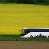 Viking River Cruise, Viking Bus with Canola Field Background