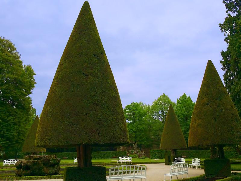 Würzburg Germany, Bishops' Residenz, Gardens, Centuries Old Trees