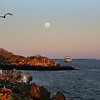 Galapagos Islands, Ecoventura Letty under full moon