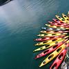 Un-Cruise Adventures, Waiting Kayaks