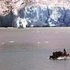 Un-Cruise Adventures,  Skiff, Fishing Boat, Dawes Glacier