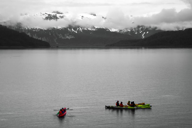 Un-Cruise Adventures, Kayaking, Shag's Cove, Glacier Bay National Park