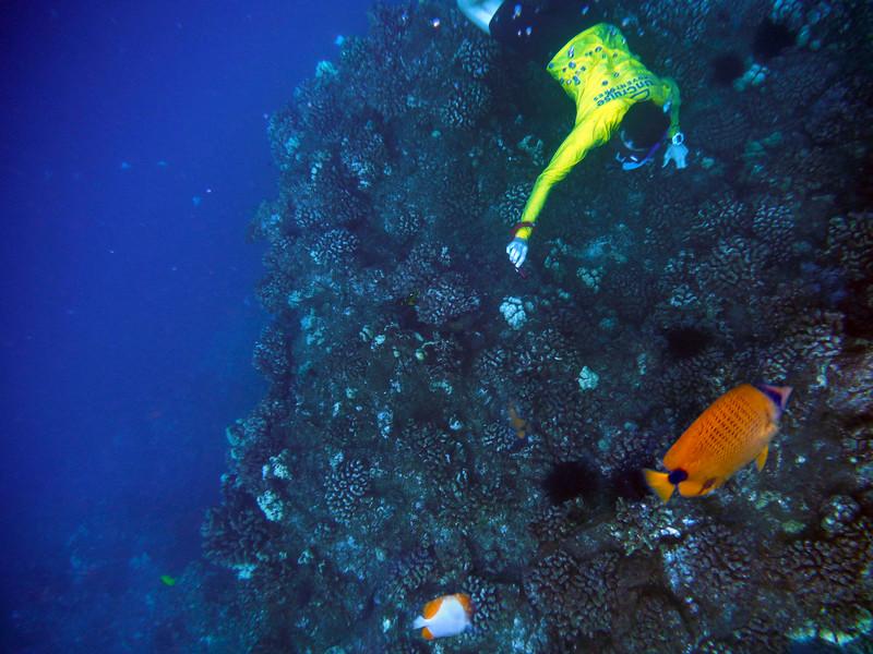 Hawaii, UnCruise Adventures, Lanai Snorkel