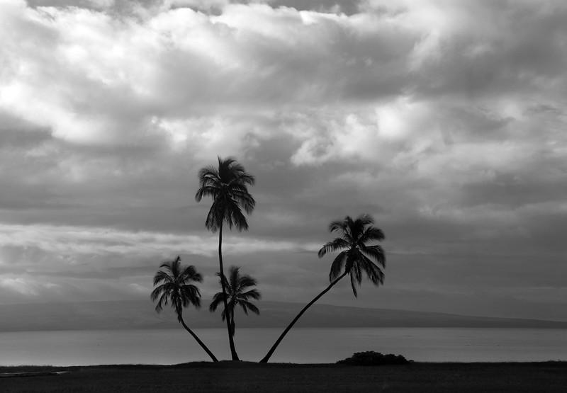 Hawaii, UnCruise Adventures, Molokai