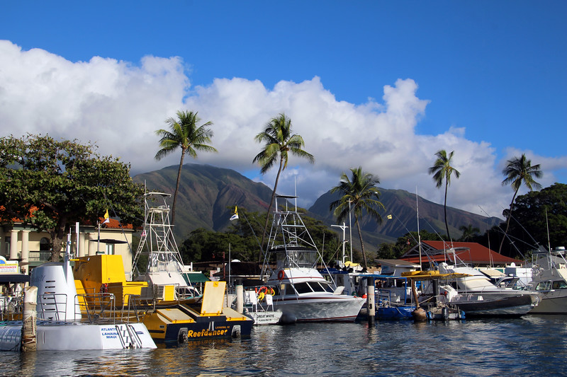 Hawaii, UnCruise Adventures, Lahaina Maui, Marina