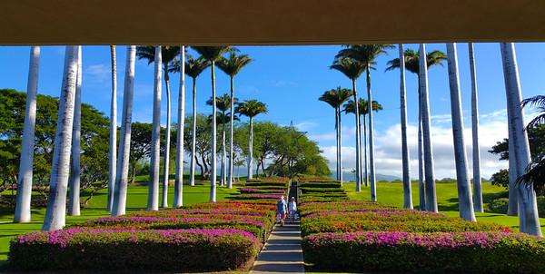 The Big Island San Diego Scenic Photos
