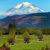 Columbia River Gorge, Hood River Valley, The Dalles, UnCruise Rivers of Adventure cruise