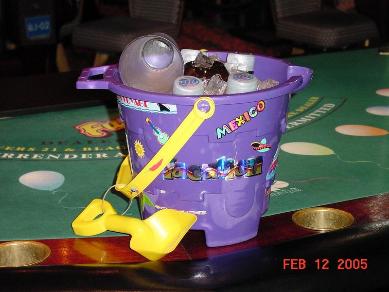 Our purple bucket to carry our cool ones in