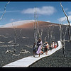 Visitors stroll on a boardwalk built over tephra deposits from the 1959 Kilauea Iki eruption on the Big Island of Hawaii; Puu Puai is in the background.