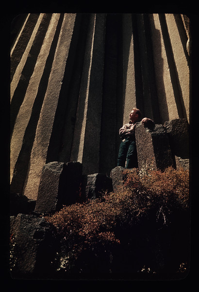 A scientist observes columnar jointing at Devil's Tower in Wyoming.
