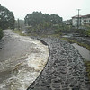 During the flood of 2000, the Waiakea stream behind UH Hilo dormitory housing filled almost to overflowing.