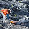UH Hilo student Katie Mulliken collects a sample of molten pahoehoe lava; note protective gear. Photo by Jack Dykinga.