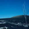 [P82] [R2/13/82] [Devastation Trail, Kilauea iki] [Kilauea Iki]
