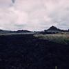 [P61] [[HI Eruptions 1955]