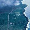 [P87] [R4-8-87] [KER JG9554] [U.S.Geological Survey Photo by J.D. Griggs]