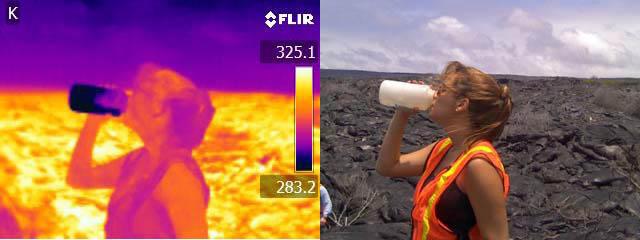 FLIR compare