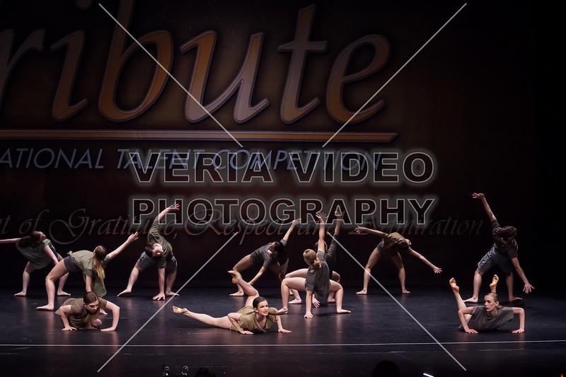 TRIBUTE2018-BELIEVE-09555
