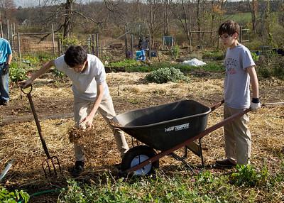 Community Service Day at Bethlehem Community Garden