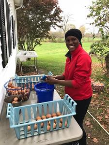 Community Service Day 2017