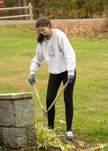 Community Service Day at Wisdom House