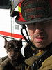 Lieutenant Garcia holding and comforting a dog found about 18 hours into a 7-alarm apartment fire where two people perished. The fire occured in near zero degree temperatures and the dog was found huddling between smouldering sofa cushions for warmth. Firefighters were in a room wetting down hot spots when the cold water from the hose caused the dog to move.
