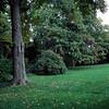 Caumsett Park c024-1