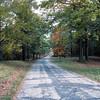 Caumsett Park c017-1