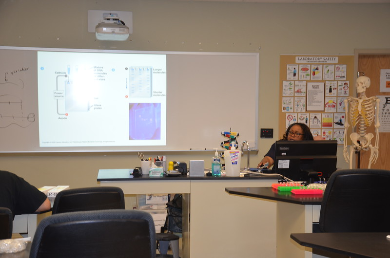 Susan Gunn, instructor for the CSI Davenport at Davenport University in Warren, leads a discussion on DNA testing.